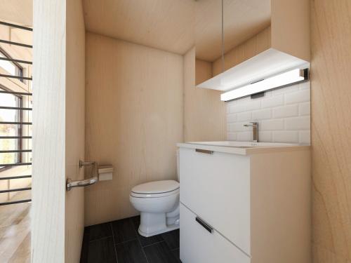 bathroom-shot